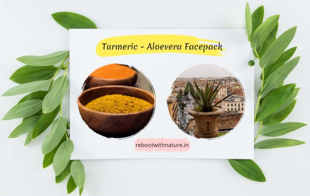 Turmeric, and Aloe Vera Face Pack for Oily Skin