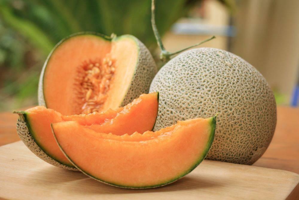 Summer Fruits for Weight Loss Muskmelon