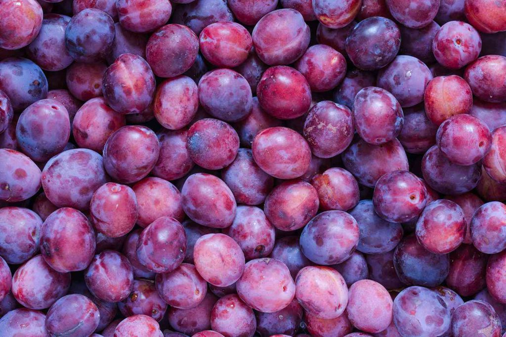 Summer Fruits for Weight Loss Plums
