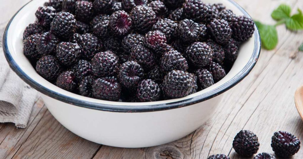 Summer Fruits for Weight Loss Blackberries